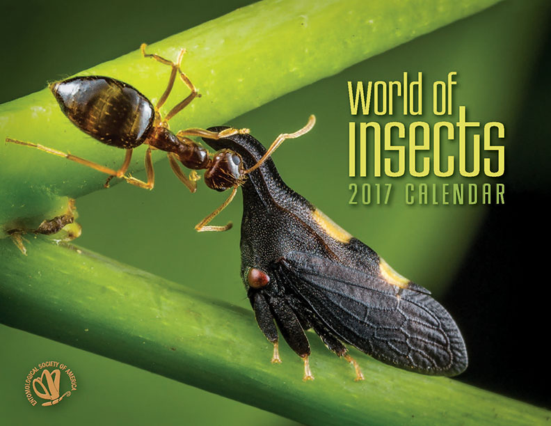 2017 World of Insects calendar cover
