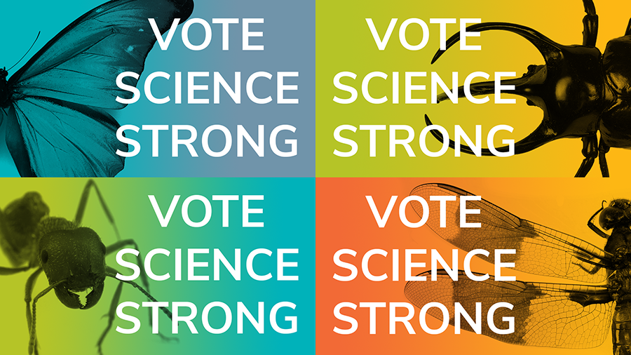 Vote Science Strong