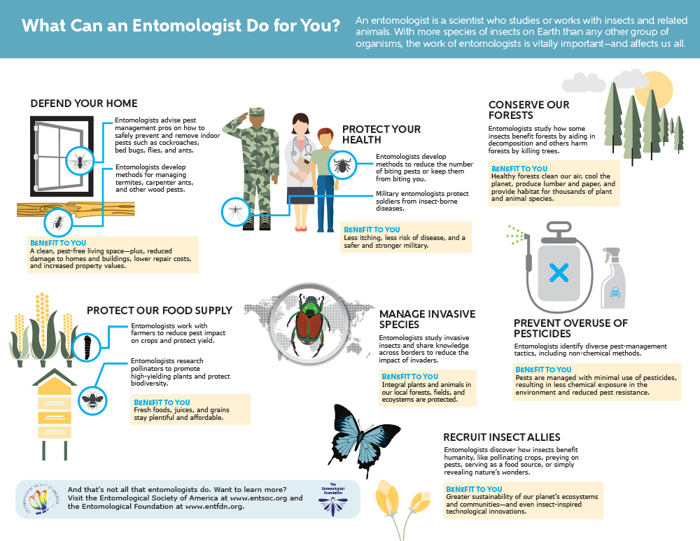 What-Can-an-Entomologist-Do-For-You-1000
