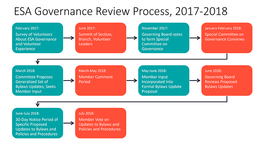 governance review process